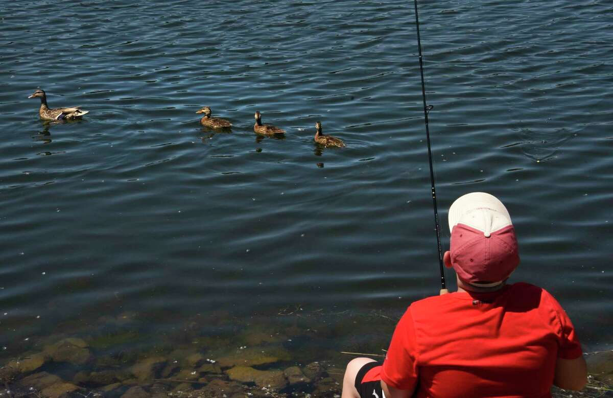 A young fisherman pulls up his line to let a duck and her young swim by at Six Mile Waterworks Park on Tuesday in Albany. Times Union meteorologist Jason Gough says the weather will be perfect for such activities again on Wednesday. (Lori Van Buren/Times Union)