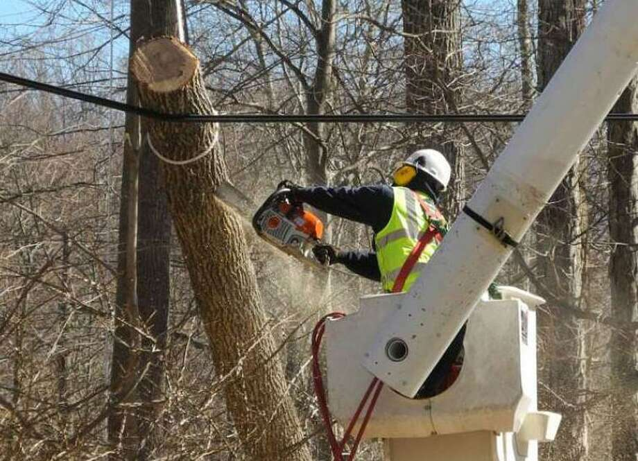 A worker saws a tree limb that had fallen on a wire after a big storm in February, 2016. Photo: Macklin Reid /Hearst Connecticut Media