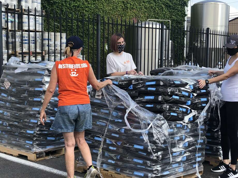 Pet owners can grab free dog food at the food drive from 10 a.m. to 1 p.m. Friday, June 19 at St. Arnold Brewing Company, 2000 Lyons Avenue, Houston. The event is first-come, first-served. Photo: Best Friends Animal Society Houston