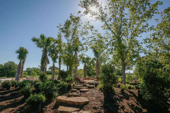 The Global Collection Garden at the Houston Botanic Garden will feature 11 zones at various elevations, inspired by different regions of the world.