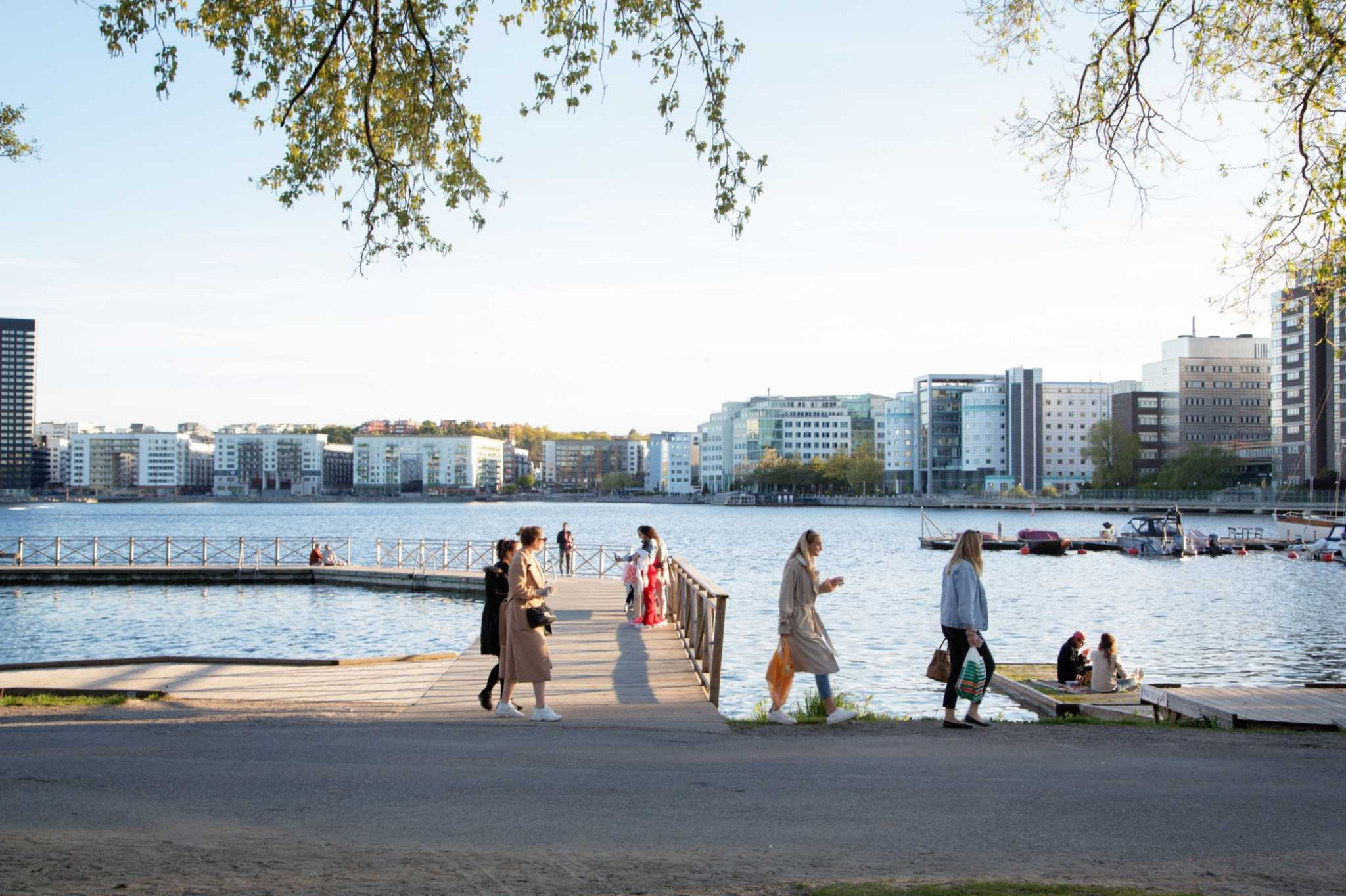Sweden has become the world's cautionary tale