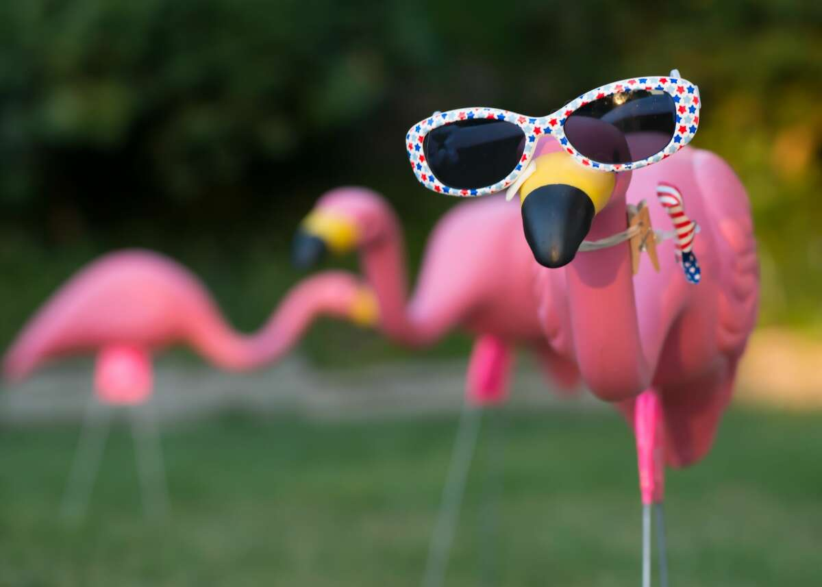 """""""No pink flamingos or parking on my grass."""" - Chi Chi Hernandez"""