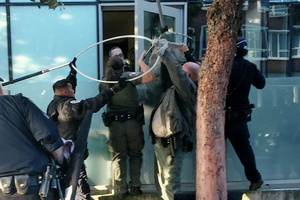 San Francisco Animal Care & Control and police officers capture a mountain lion in the Mission Bay neighborhood of San Francisco, Calif. on June 18, 2020.