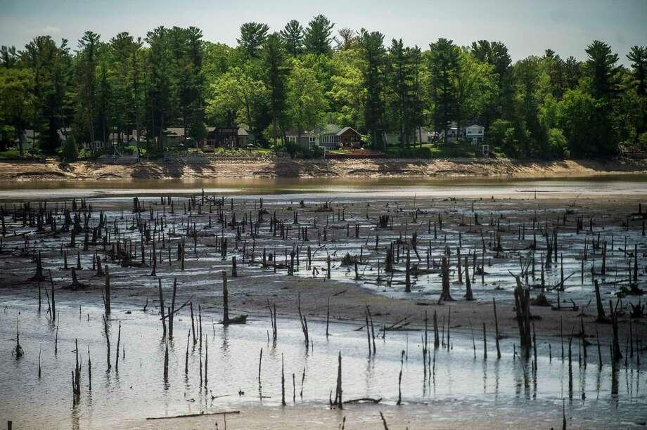 Sanford Lake is reduced to a muddy expanse May 27. (Katy Kildee/kkildee@mdn.net)