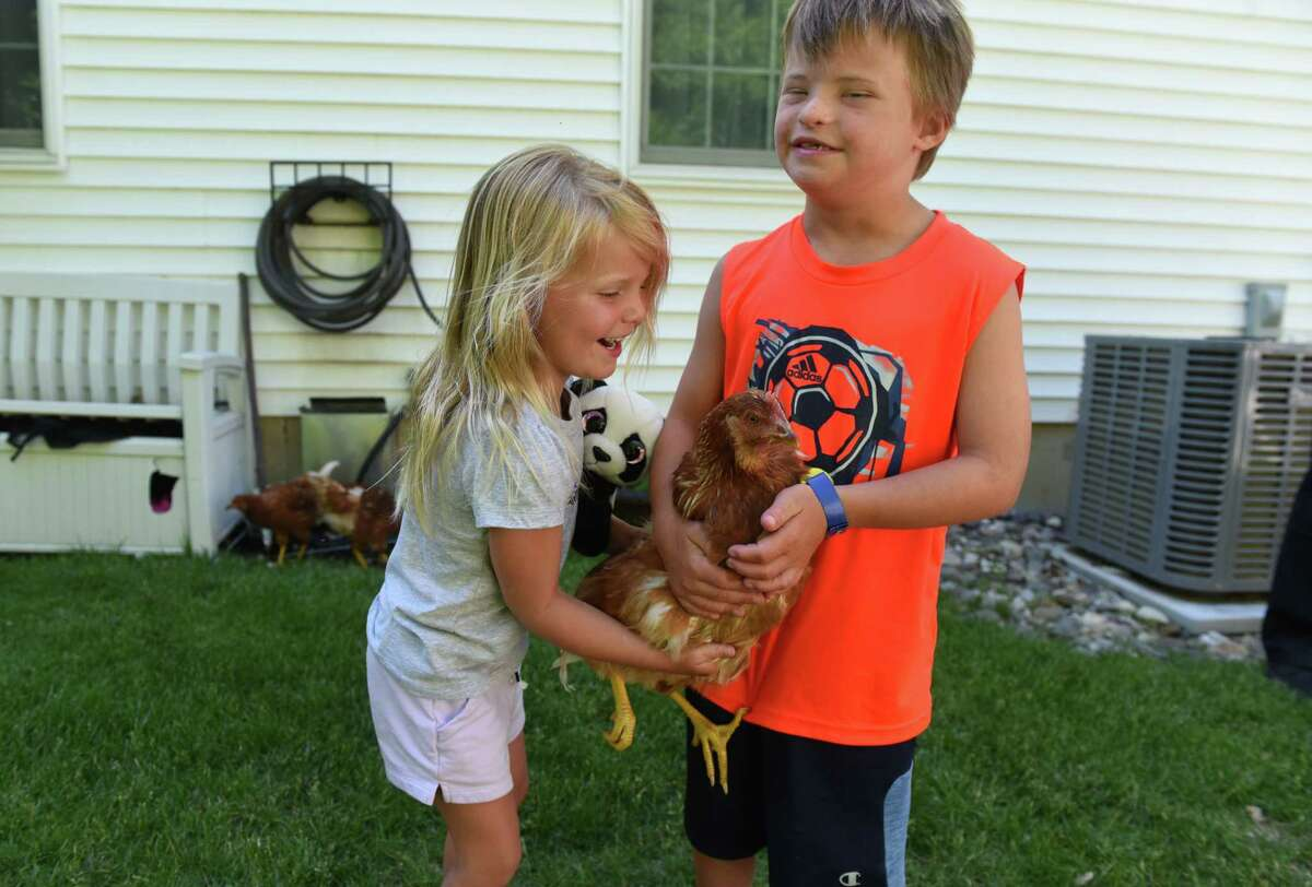 Josie, left, and Oliver Stallmer hold one of the family chickens on Wednesday, June 17, 2020, in Cohoes, N.Y. (Will Waldron/Times Union)