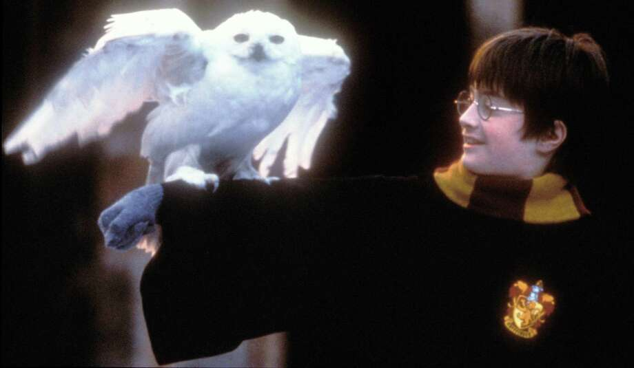 """Daniel Radcliffe in a scene from """"Harry Potter and the Sorcerer's Stone."""" Photo: Getty Images / Getty Images / This content is subject to copyright."""