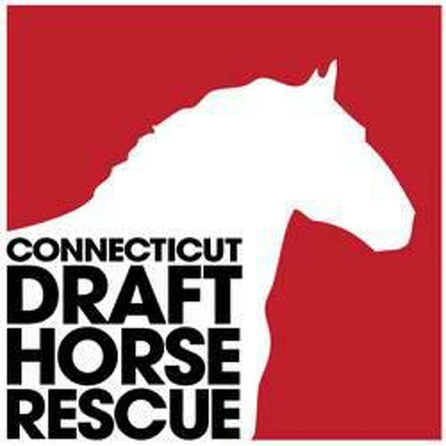 Connecticut Draft Horse Rescue Photo: Contributed Photo