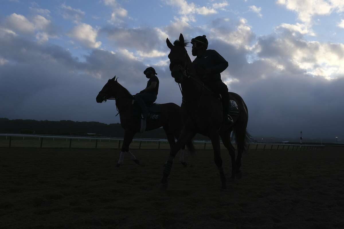 Riders and horses participate in work outs at Belmont Park in Elmont, N.Y., Friday, June 19, 2020. (AP Photo/Seth Wenig)