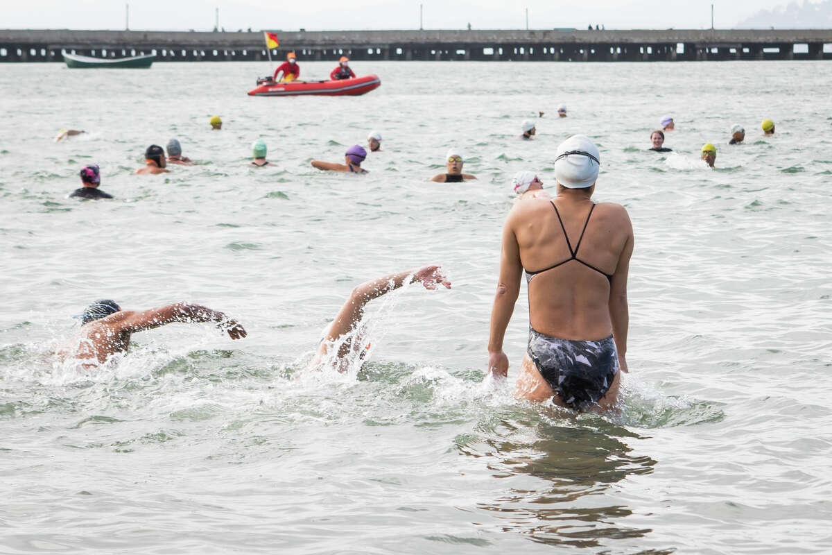 The water was a cool 60 degrees Friday night, and the people gathered in the bleachers before the swim wore everything from bikinis and Speedos to hooded wetsuits made with inch-thick neoprene. Some wore goggles and masks, and fins. Many had written