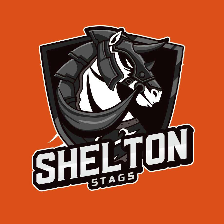The Shelton Stags is offering local high school girls' lacrosse players the chance to get back on the field for some competitive action. Photo: Contributed Photo / / Connecticut Post