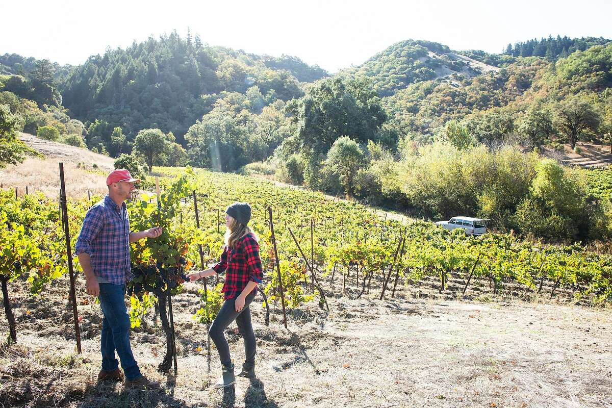 Mike Lucia (left) with wife Jill Shadek at Cole Ranch. The couple plan to replant much of the vineyard to Alpine grape varieties.