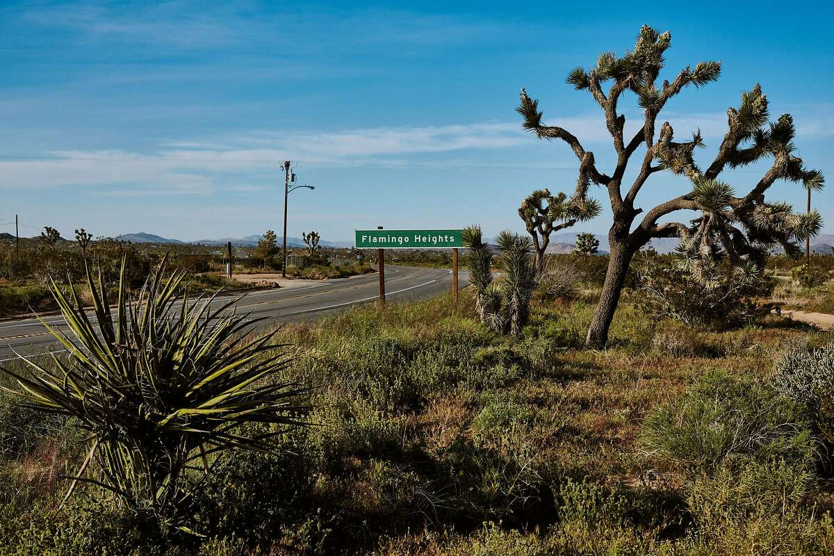 Joshua Tree National Park, which is fouled with 54 pieces of plastic per square meter per day.