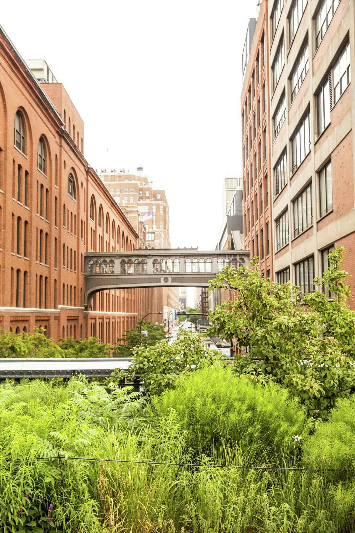 A view of the West 15th Skybridge from the High Line.