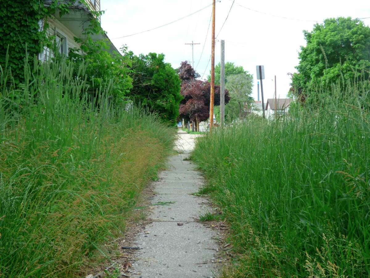 Unchecked grass like this can get you into hot water with your neighbors and the city. (File Photo)