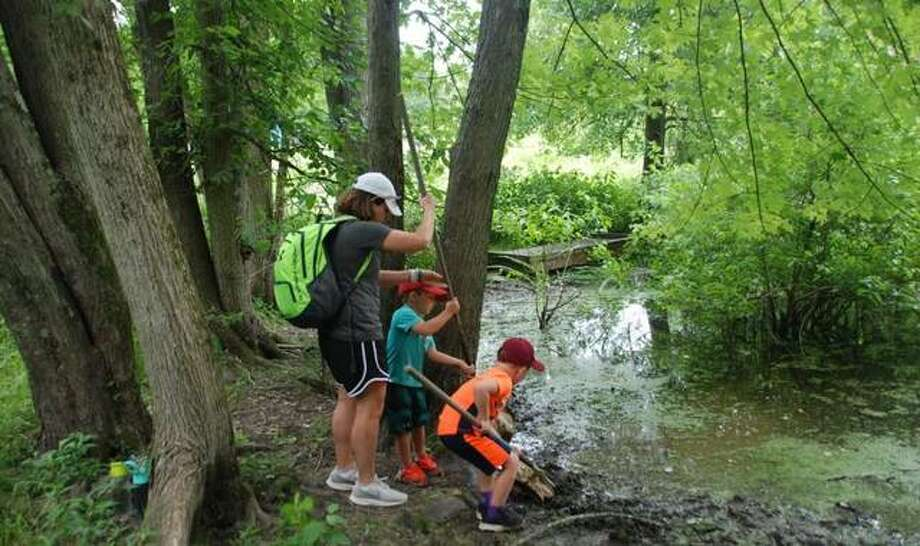 Kids use nets at the stream to learn about local animals at The Nature Institute in Godfrey.