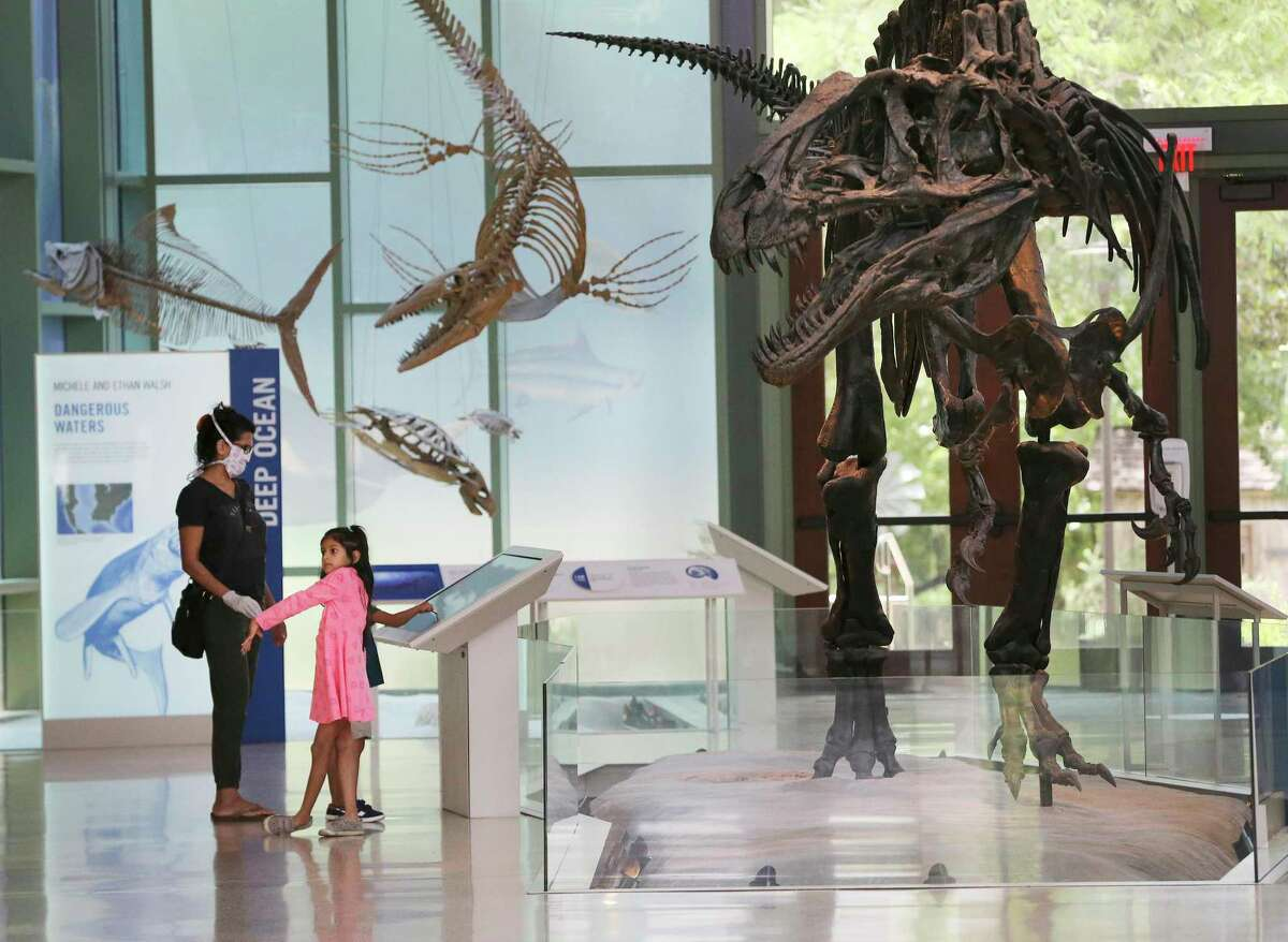 The Witte Museum, which reopened May 29, is temporarily suspending its popular Free Tuesdays program.