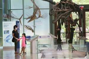 The Witte Museum, which reopened May 29, has temporarily closed in response to the surge of COVID-19 cases in the city.