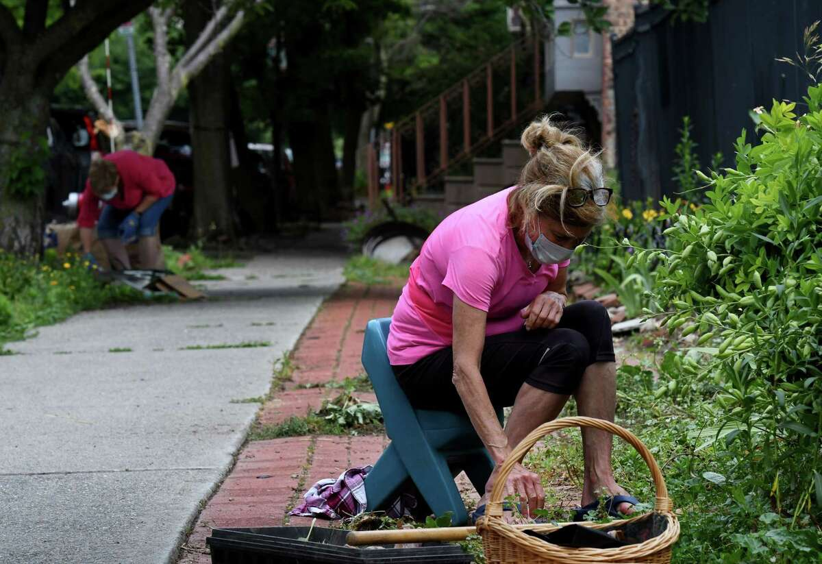 Maureen Kruger, a volunteer with the Center Square Neighborhood Association, clears weeds from the sidewalk around Hudson-Jay Park on Monday, June 29, 2020, on Hudson Avenue in Albany, N.Y. The neighborhood park adjacent to Empire State Plaza is maintained by volunteers. (Will Waldron/Times Union)