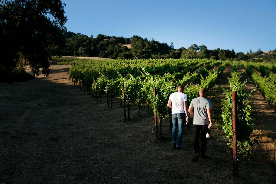 Winemakers Sam Bilbro of Idlewild Wines, left, and Mike Lucia of Rootdown Wines walk through Lost Hills Ranch in Mendocino County's Yorkville Highlands AVA. Photo: Ramin Rahimian / Special To The Chronicle