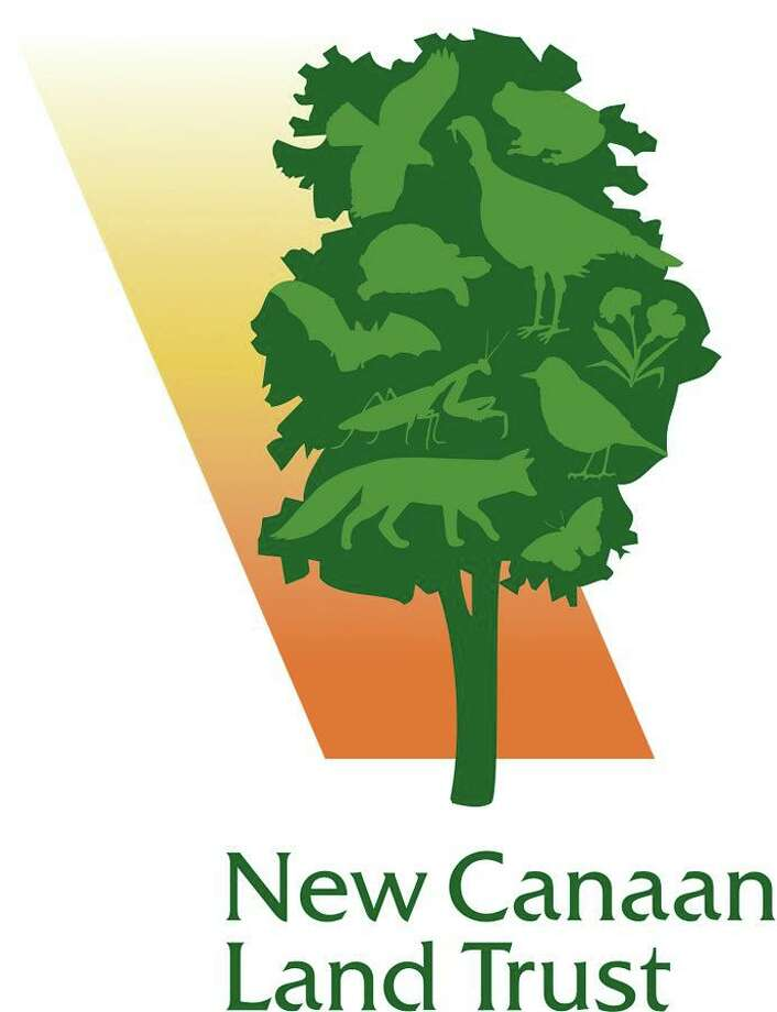 The New Canaan Land Trust announced the creation of two seasonal jobs, geared towards young adults. Photo: New Canaan Land Trust