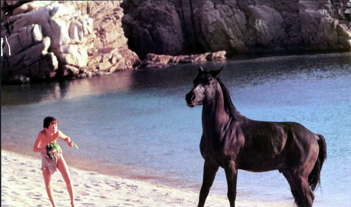THE BLACK STALLION, THE BLACK STALLION US 1979 KELLY RENO Date 1979. Photo by: Mary Evans/UNITED ARTISTS/Ronald Grant/Everett Collection(10303023)