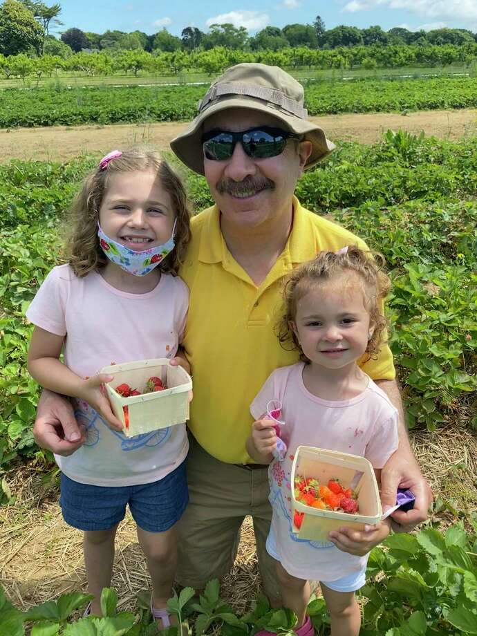 Chloe, left, and Lilly help grandpa Jerry Zezima find the best strawberries in the field. Photo: Lauren Robert-Demolaize / Hearst Connecticut Media