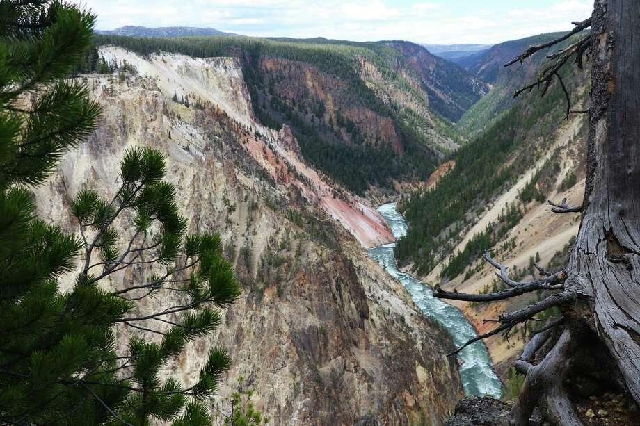 The pink and yellowish walls of the Grand Canyon of the Yellowstone. Photo: Photo For The Washington Post By Alex Pulaski / Alex Pulaski