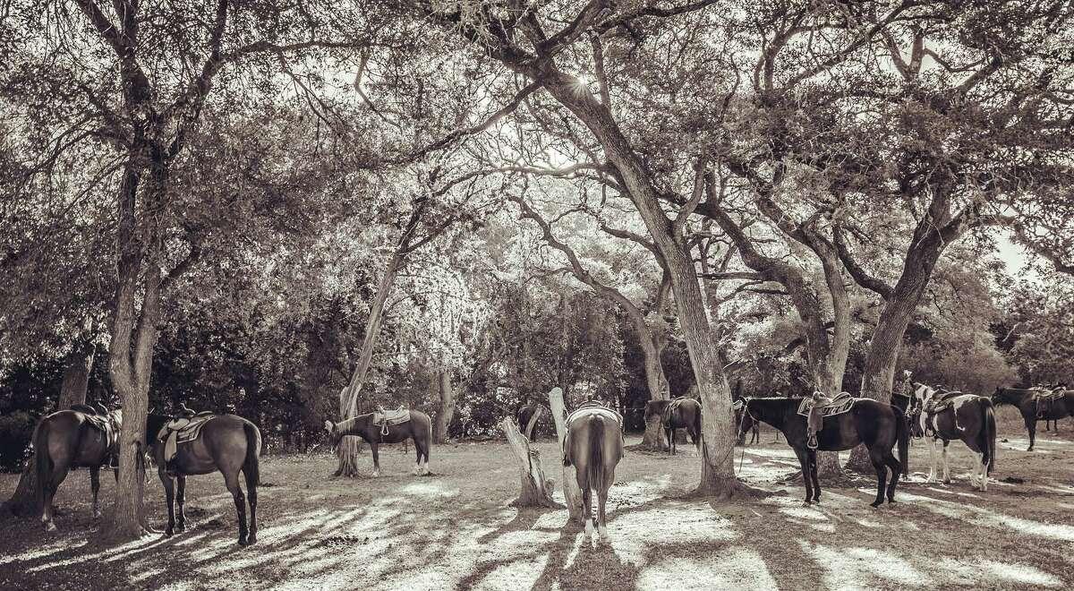 Mayan Ranch350 Mayan Ranch RdBandera, Texas 78003 Yelp review by Twila M-