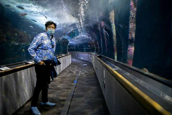 George Jacob, the president and chief executive officer of the Aquarium of the Bay, at the aquarium�s underwater tunnel on Tuesday, June 30, 2020, in San Francisco, Calif. Aquariums and zoos in San Francisco remain closed because of the state of the coronavirus pandemic.