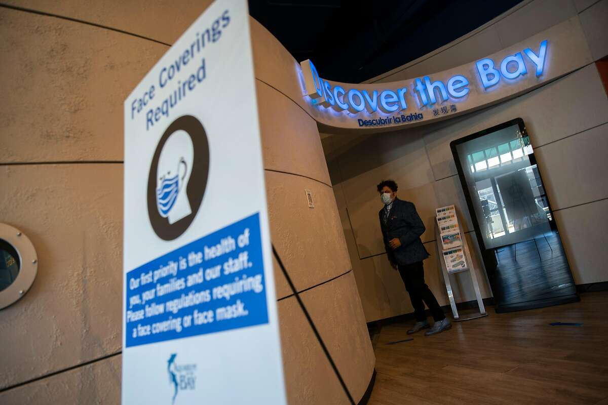George Jacob, the president and chief executive officer of the Aquarium of the Bay, at the aquarium on Tuesday, June 30, 2020, in San Francisco, Calif. Aquariums and zoos in San Francisco remain closed because of the state of the coronavirus pandemic.