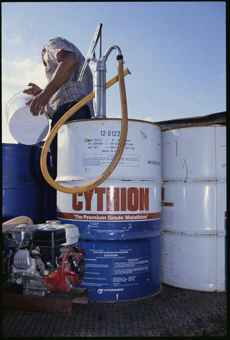 Cythion, the brand name for malathion, is used to kill the medfly, which destroys crops. Photo: Steven D Starr/Corbis Via Getty Images