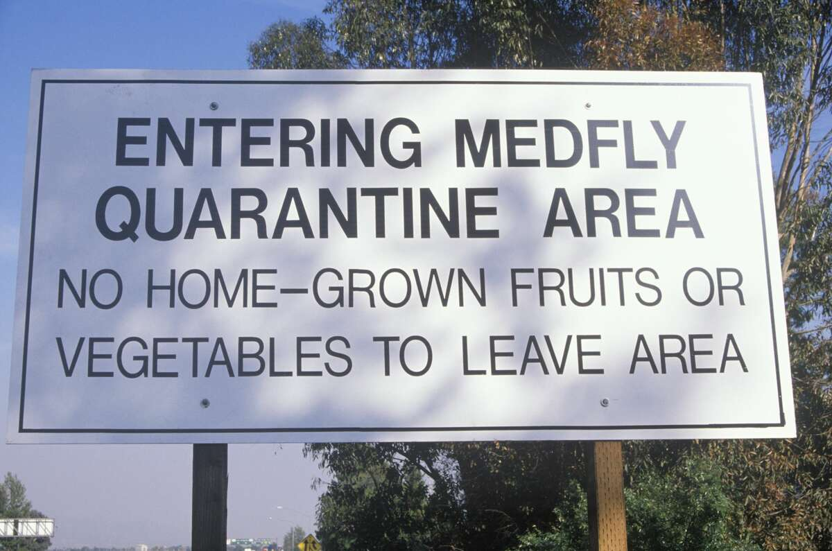 A quarantine warning sign for the medfly.