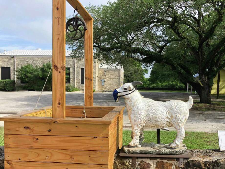 Even the Montgomery goat is staying safe during the pandemic. He's on the grounds of the Community Building in Downtown Historic Montgomery. Photo: Courtesy Photo
