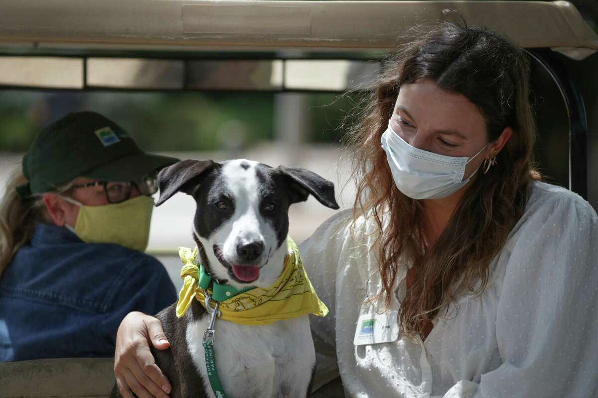 Buffalo Bayou Park Venue and Visitor Supervisor Heather Hinzie (left-right), her dog