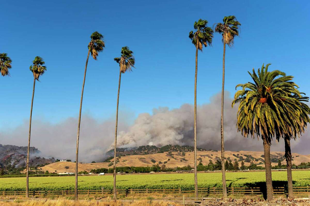 The Crews Fire burns near Gilroy, Calif., Sunday, July 5, 2020.