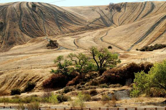Trails created by off road vehicles mark the hills in the Carnegie state vehicular recreation area, which borders Tesla Park in Livermore, Calif., Thursday, October 18, 2012.  The state plans to use the Tesla land for an off road vehicle park as well, but local advocacy groups are hoping the land will be preserved instead.