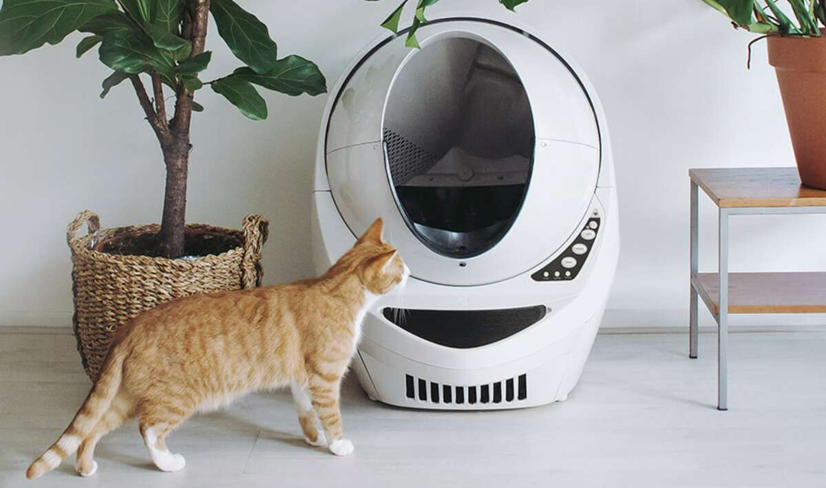 Litter Robot 3 Connect, $499.99
