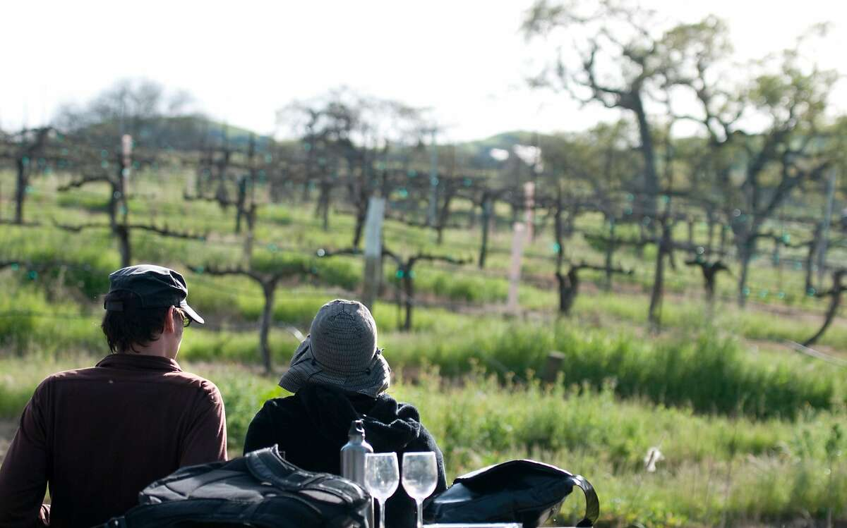 Visitors enjoy an outdoor view of the vineyards with glasses of wine at Fenestra Winery in Livermore, Calif. on Sunday, Mar. 14, 2010.