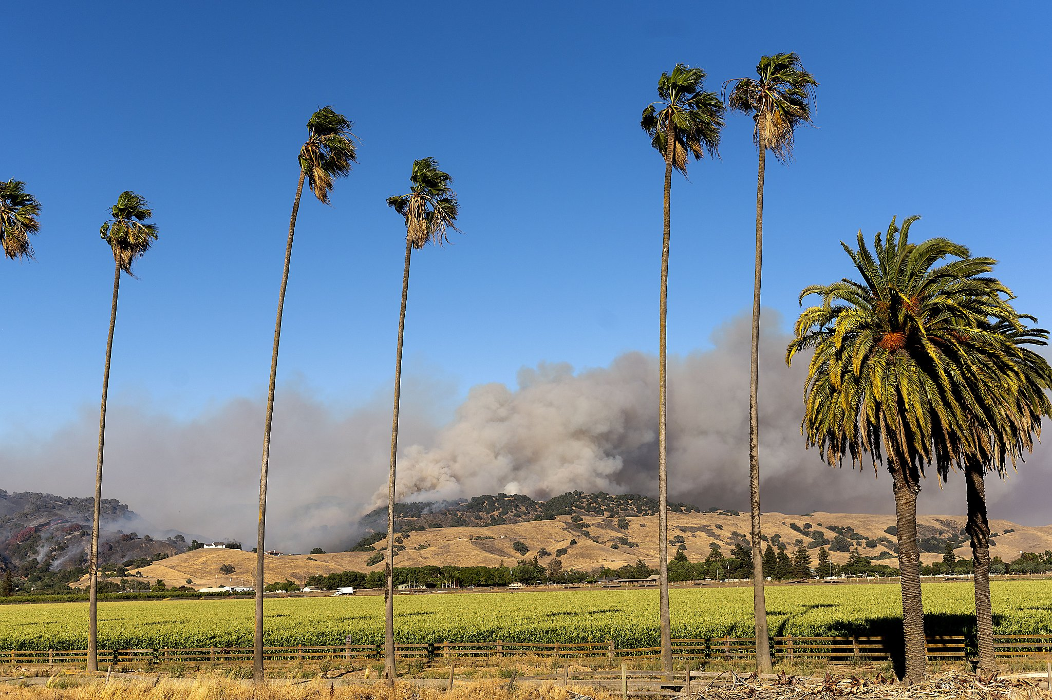 Crews Fire near Gilroy is 50% contained