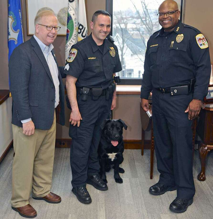 Mayor Mark Boughton, left, Sargent Jim Antonelli, Chief Patrick Ridenhour and Rocky the city's new police dog, in the mayor's City Hall office. Wednesday, March 1, 2017, in Danbury, Conn. Rocky is assigned to the Community Conditions Unit. Photo: H John Voorhees III / Hearst Connecticut Media /