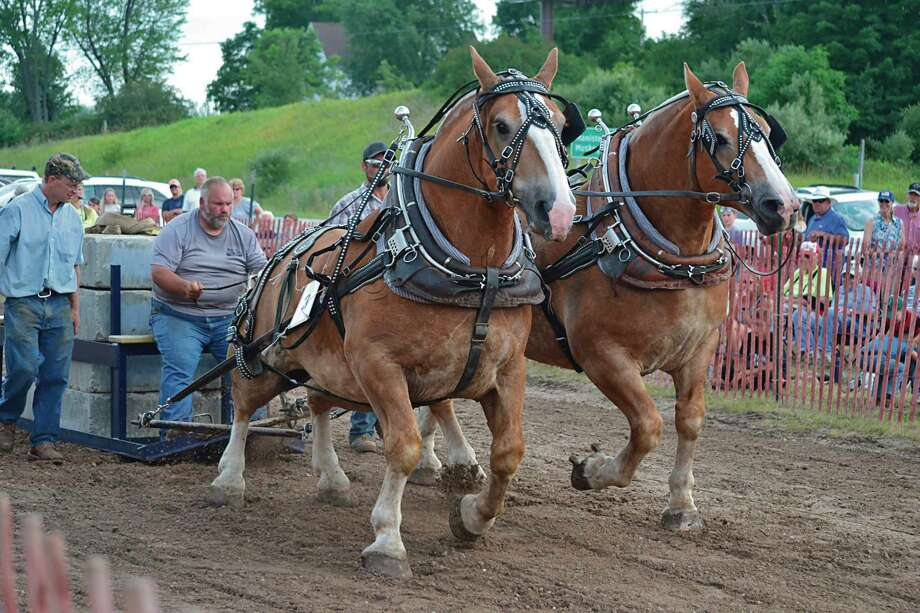 Bear Lake Days may be canceled in 2020, but some events including the annual horse pull will still be held during the Bear Lake Family Fun Weekend, July 10-12. (File photo)