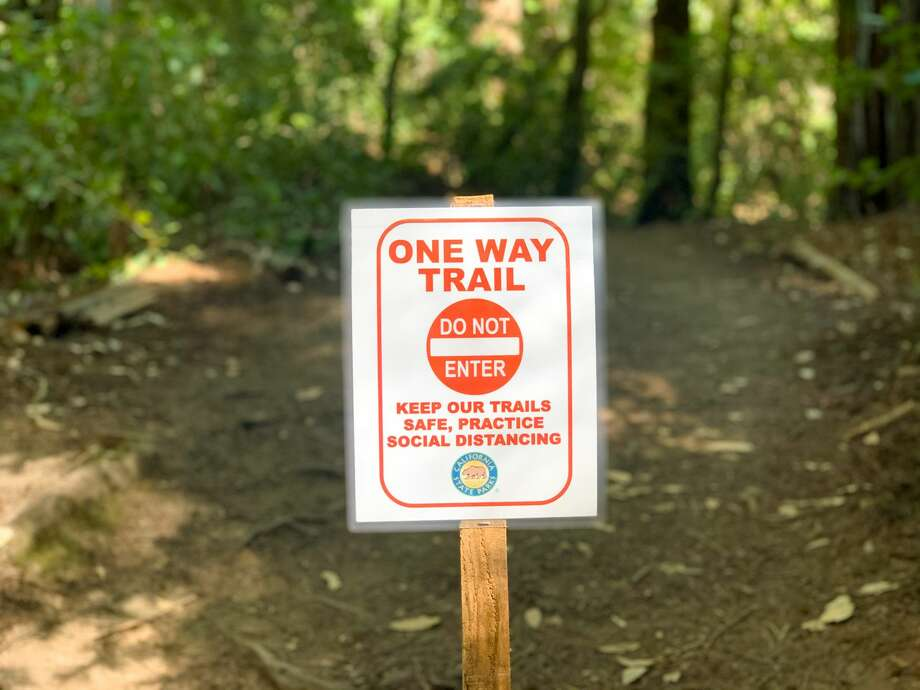There were one-way signs in both directions for loop trails at Big Basin Redwoods State Park. Photo: Grant Marek / SFGATE