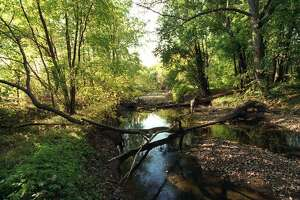 A scenic shot of the Still River in Danbury 10/20/97.
