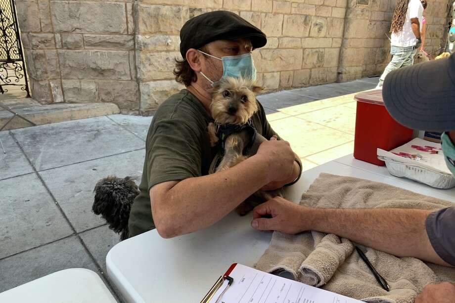 A pet is treated by the Pets in Need Project. Photo: Pets In Need Project