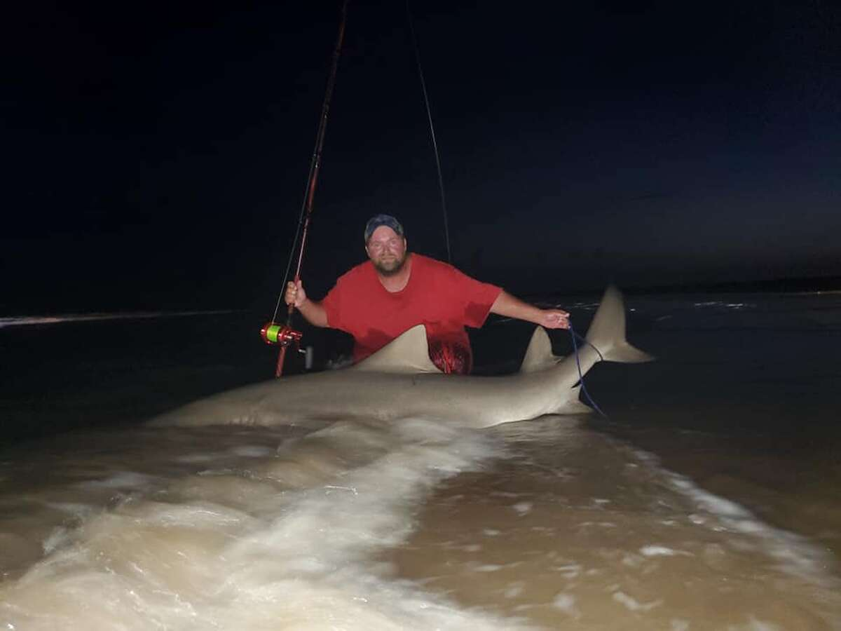 On Monday, Donnie Tidwell from Brazoria, who has been fishing for sharks for more than 10 years, reeled in a 9-foot, 300-pound shark from the shoreline at Matagorda Beach. Tidwell said it was the biggest catch he's ever had from a beach shoreline.