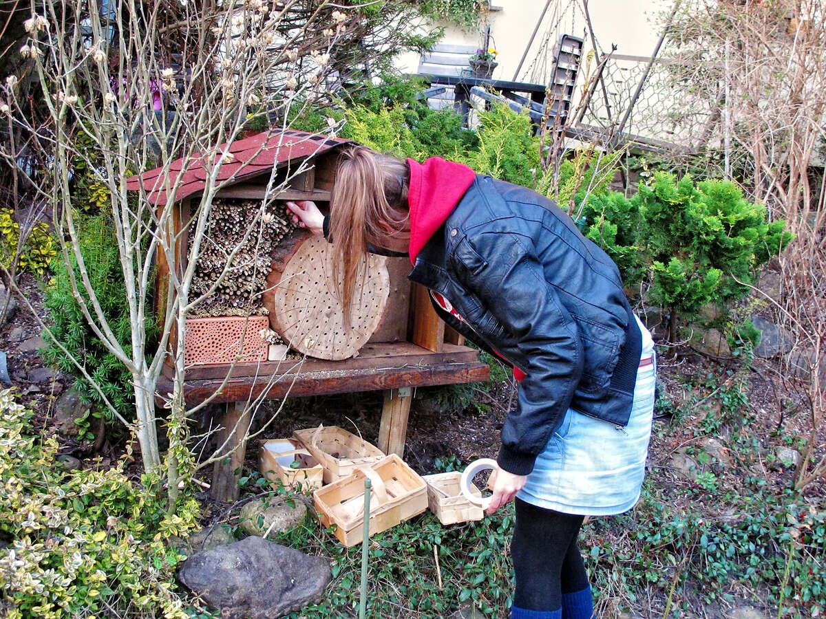Building up a new insect hotel for wild bee made of reed. a house of different kinds of insects in a garden.