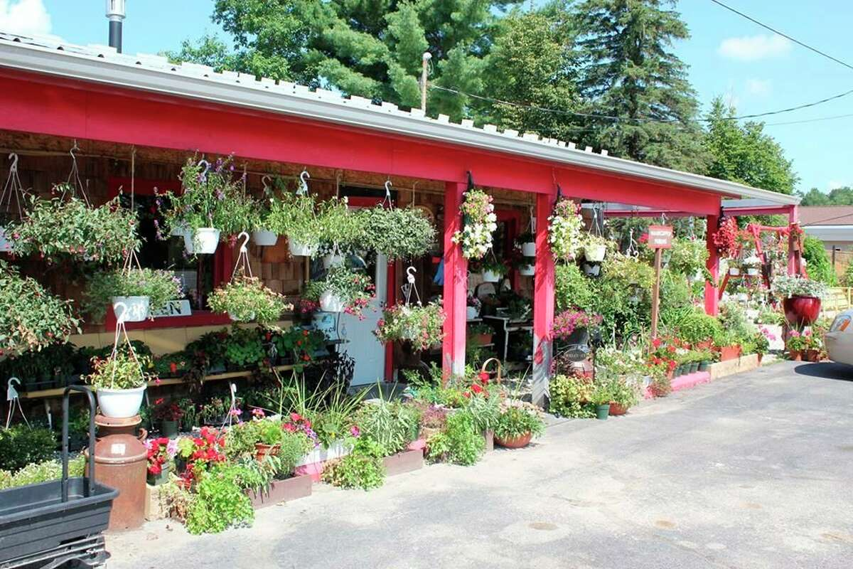 P & J's Plantiques offers a wide variety of unique items, including exotic plants, antiques and collectibles. (Courtesy photo)