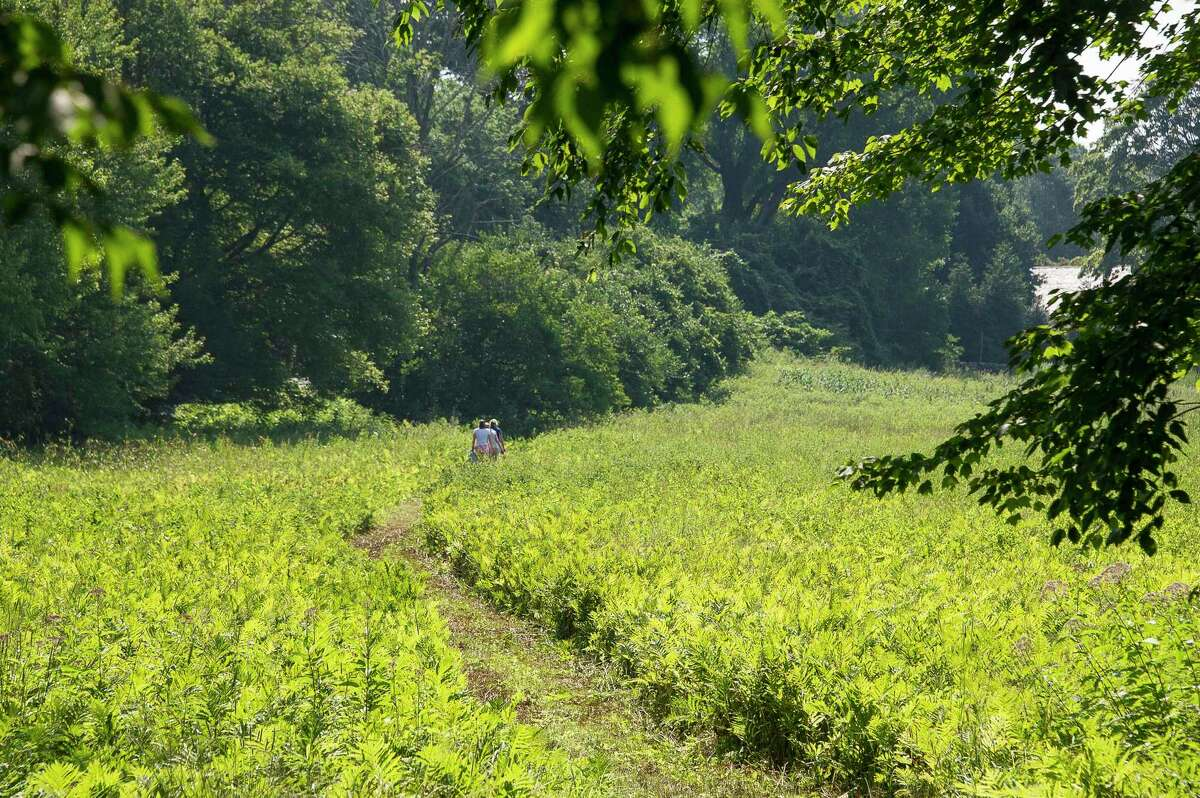 The Brian E. Tierney Preserve, above, is one of the many preserves the Roxbury Land Trust oversees.