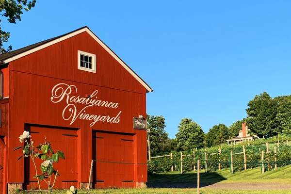 The rural setting of Rosabianca Vineyards in Northford.