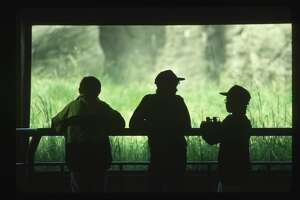 Children observe birds from an observation blind at Seattle's Woodland Park Zoo. (Photo by Bob Rowan/Corbis via Getty Images)
